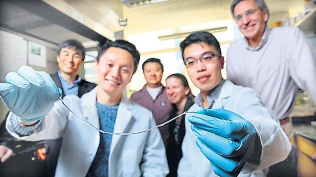 "Spider web inspired implantable ""string"" could control diabetes - Sakshi"