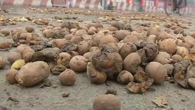 farmers dump potatoes outside Yogi home - Sakshi