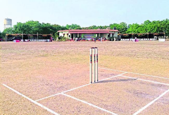 Cricket tournaments to sankranti special - Sakshi