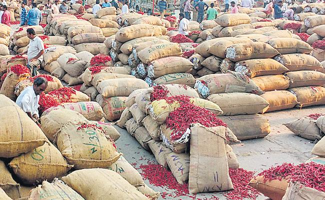 worst falling price of chilli even though demand is high - Sakshi