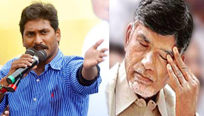 CM Chandrababu in shock with YSRCP's decision to resign - Sakshi
