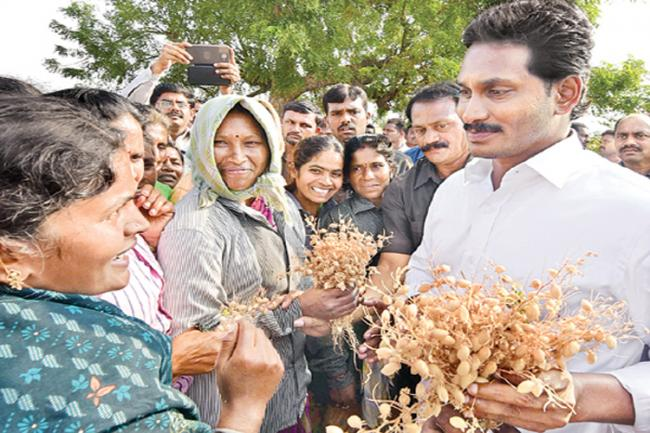 YS Jaganmohan Reddy fires on chandrababu govt at Nellore - Sakshi