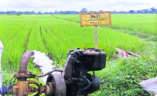 RAFTAR scheme replaced RKVY scheme - Sakshi