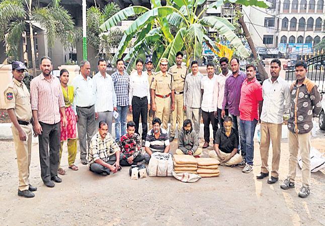 Grabbing marijuana in Dhulpet - Sakshi