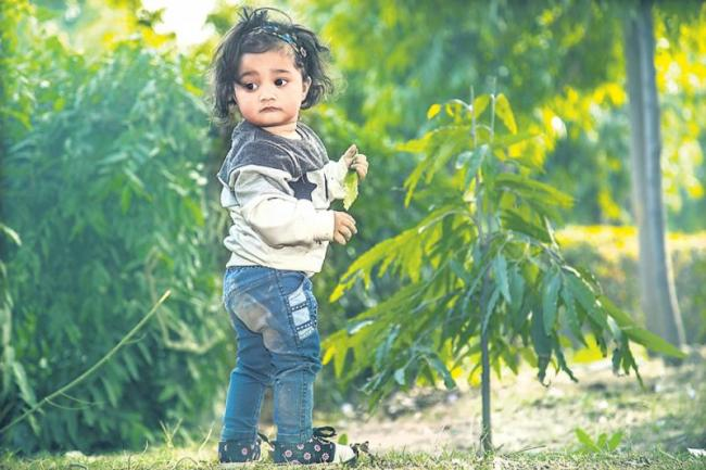 A child's brain will be good with greenery - Sakshi