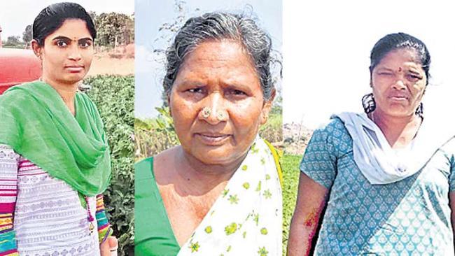 sucessfill women farmers - Sakshi