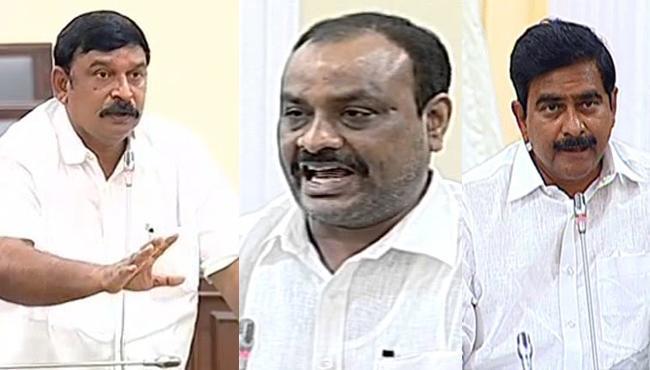 BJP MLA Vishnukumar Raju Hits Out At TDP Government In Assembly - Sakshi