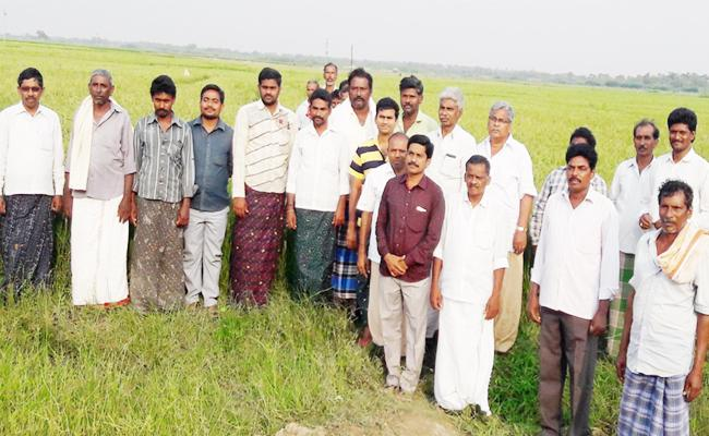 Somireddy Cheat Farmers And Ap People - Sakshi