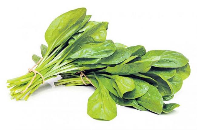 Iron is very high in spinach - Sakshi