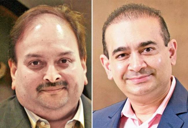 I-T Dept Probes 50 Secret Bank Accounts Of Nirav and Mehul outside India - Sakshi