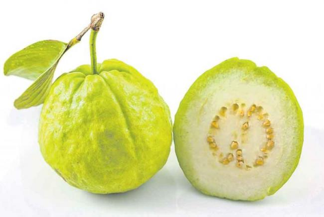 Vitamin A is very high in Guava - Sakshi