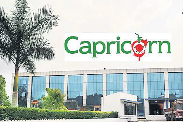 Capricorn Food gets SEBI nod to launch IPO - Sakshi