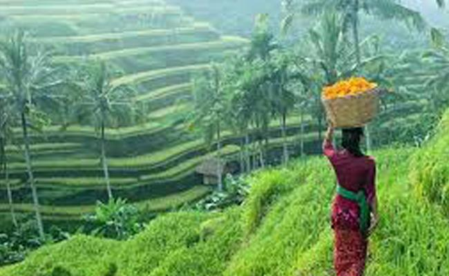 Why Bali Is Most Suitable Place To Visit Everyone - Sakshi