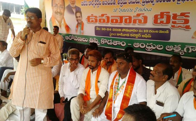 BJP Leaders Fasting Protest On TDP Government - Sakshi