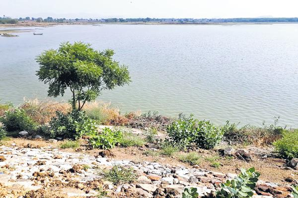 Village will be great with Ponds full of water - Sakshi