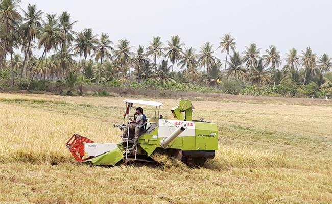 Sbsidy Missions Gon In West Godavari - Sakshi