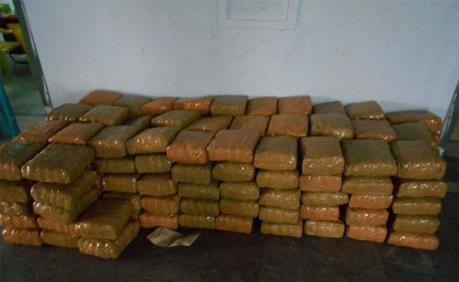240 kg Of Marijuana Possession - Sakshi
