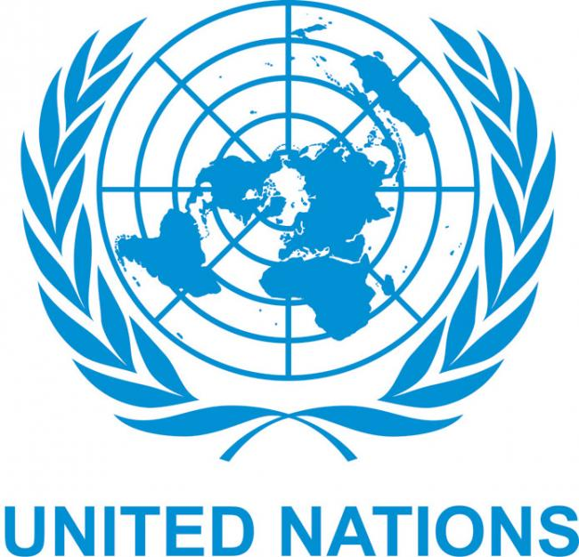United Nations releases first report on rights violation in Kashmir, PoK - Sakshi