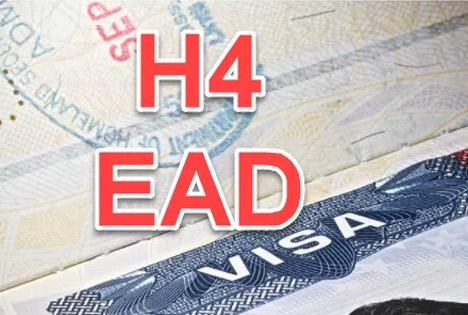 Trump govt puts H1B workers' spouses on thin ice - Sakshi
