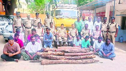 Eleven Arrested Red Smugglers - Sakshi