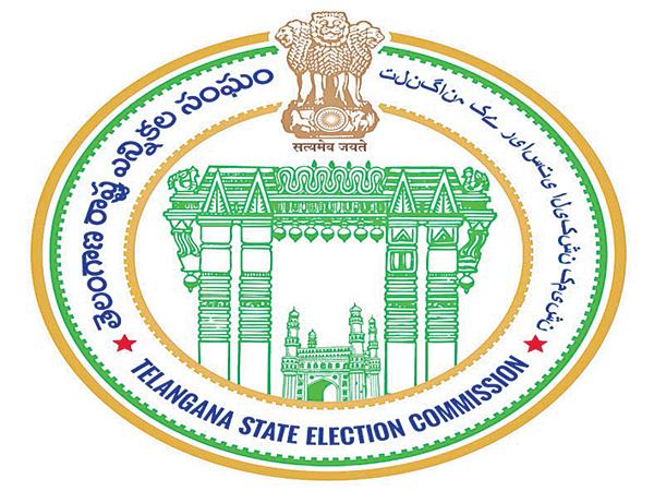 State Election Commission Serious on Panchayat Officers issue - Sakshi