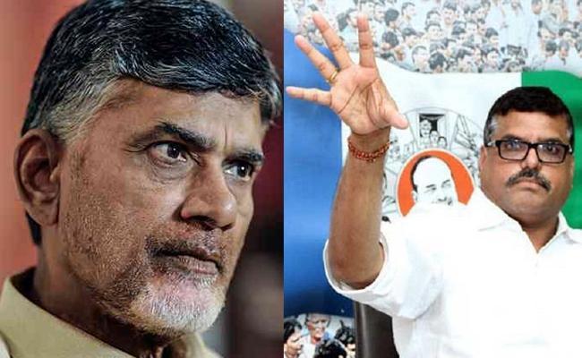 YSRCP Leader Botsa Satyanarayana Slams Chandrababu Over Venkataraya Chitfund scame - Sakshi