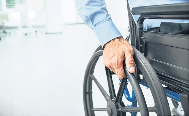 Physically Disabled Persons New Laws For Development - Sakshi