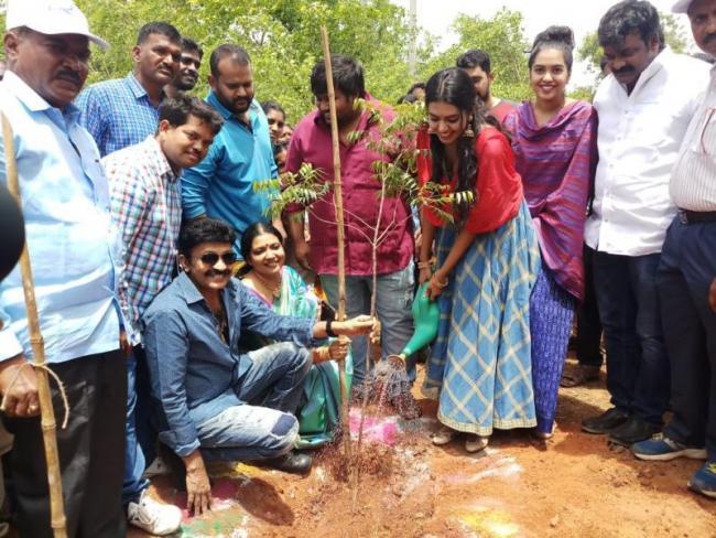 Jeevitha Rajasekhar Family Participates In Harithaharam - Sakshi