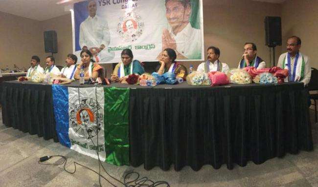YS Rajasekhara Reddy Jayanti Celebrations At Dallas - Sakshi
