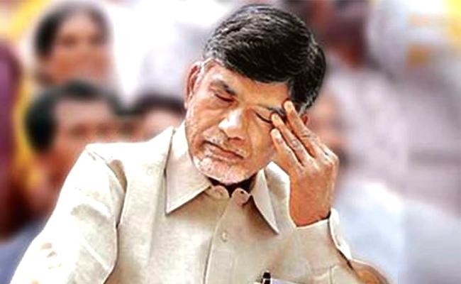 Chandrababu Naidu Fake Promotions On Anna Canteen - Sakshi