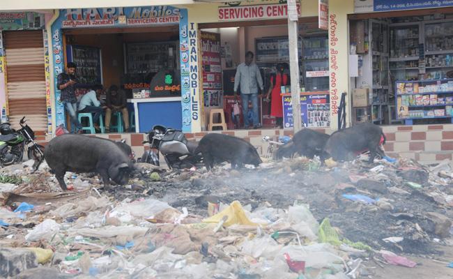 Dumping Yard In Public Area Anantapur - Sakshi