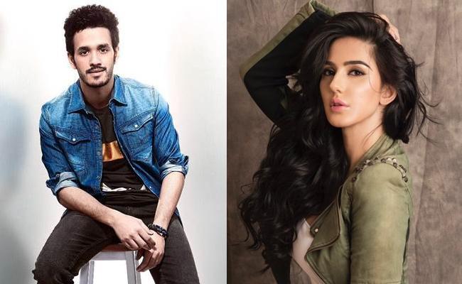 Farah Karimaee Special Song In Akhil New Film - Sakshi