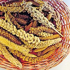 millet basket crops - Sakshi