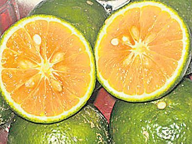 Orange cancer prevention - Sakshi