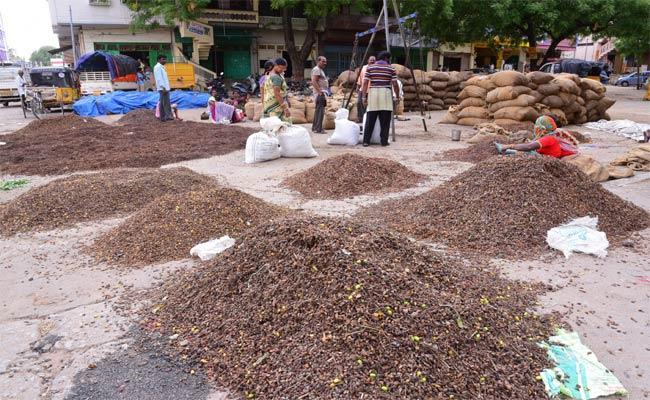 Neem seeds Business In YADADRI - Sakshi