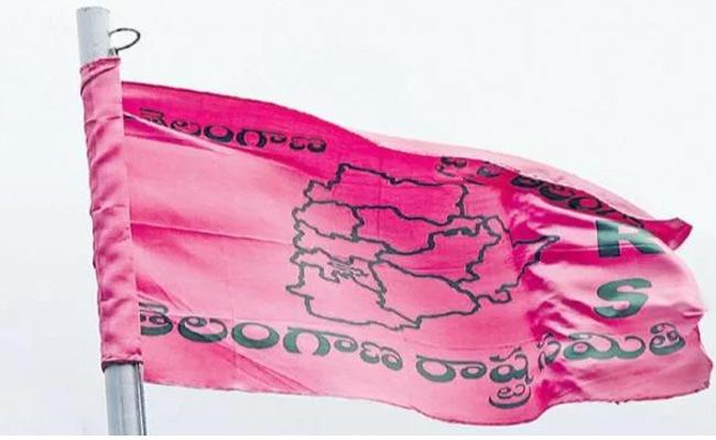 KCR Focus On Increase TRS Party Strength In Districts - Sakshi