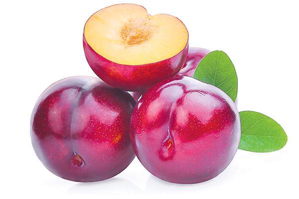 Immunity with all-bukhara fruit - Sakshi