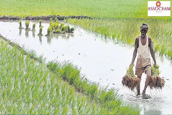 MSP hike will result in huge rural demand push to economy: Assocham - Sakshi