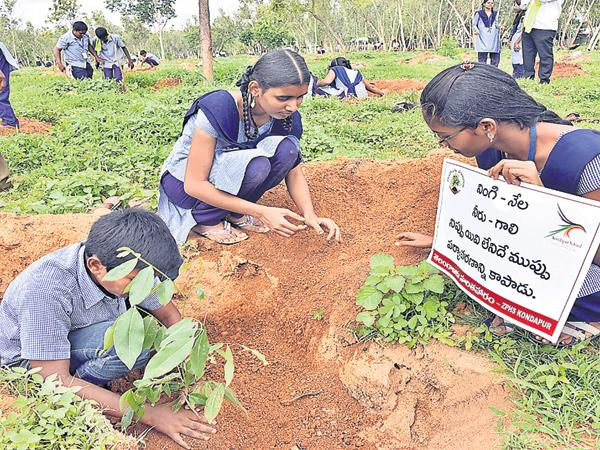 Haritha Haram Controversy is ended - Sakshi