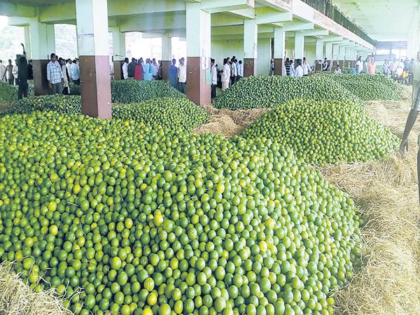 Unpredictable response from farmers - Sakshi
