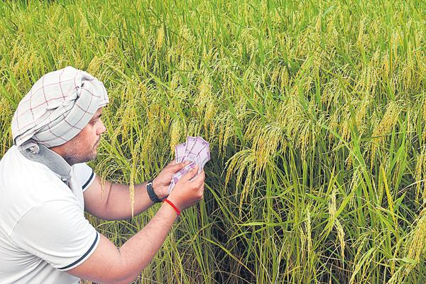 Bank restrictions in the Crop loans - Sakshi