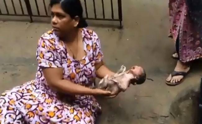 Found Newborn Inside Drain In Chennai - Sakshi