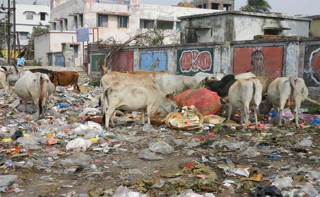 No swachh bharat In Orissa - Sakshi