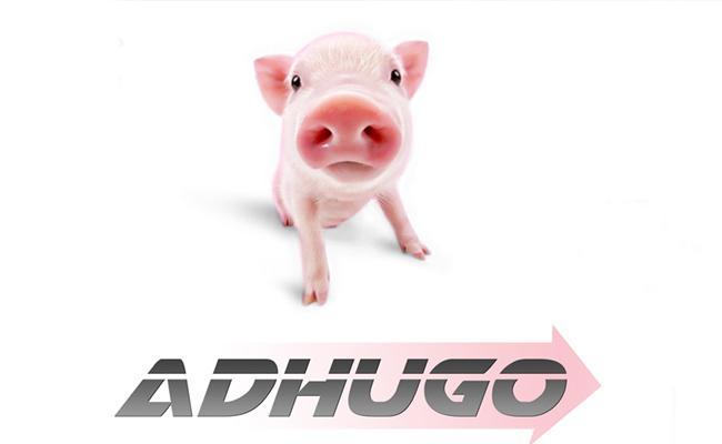 Ravibabu Adugo Release Date Confirmed - Sakshi