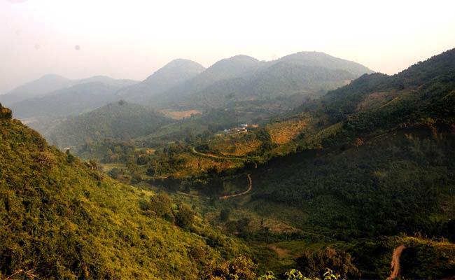 Illegal Smuggling Of Red Sandal In Vizianagaram - Sakshi