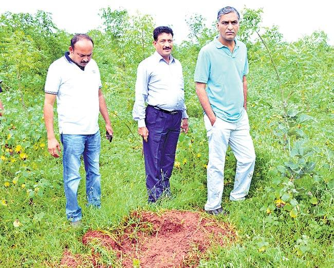 Harish Rao inspects Urban Park development works in Siddipet - Sakshi