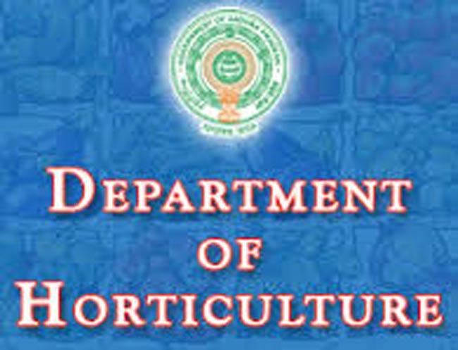 august 23 to 26 Garden Show in Vijayawada - Sakshi