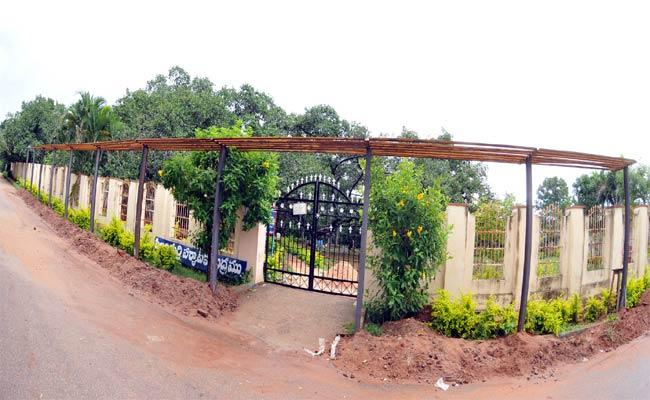 Canopy Bridge To Pillala Marri - Sakshi