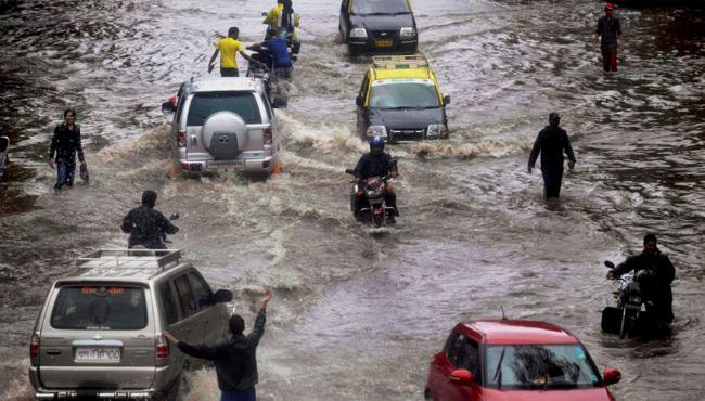 heavy rains in vidarbha, marathwada - Sakshi