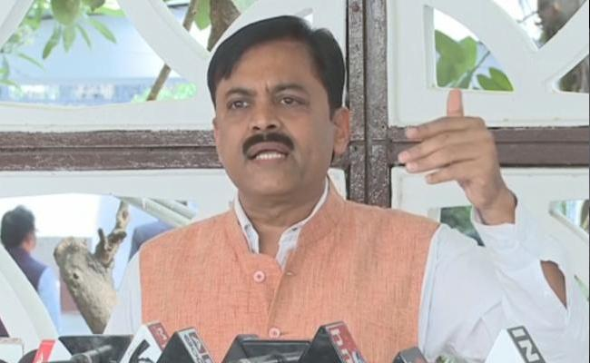 BJP Leaders Slams Chandrababu In Vijayawada - Sakshi